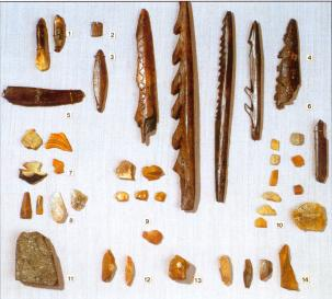 Equipment of the Mesolithic stopping place