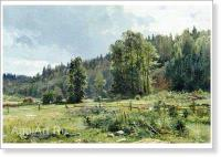 I.I. Shishkin. Meadow at the Edge of Forest. Siverskaya. 1887