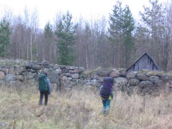 Finns. Ruin of the Finnish farmstead (Karelian Isthmus)