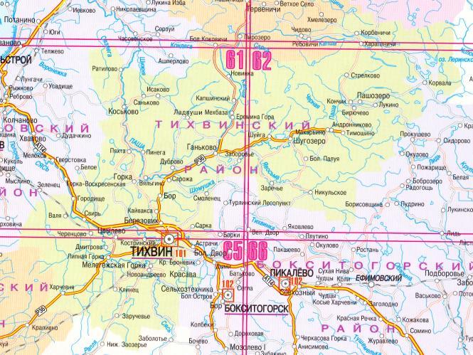 Тихвинский район. Вепсский лес